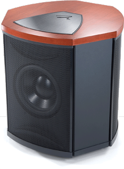MartinLogan Descent i subwoofer.
