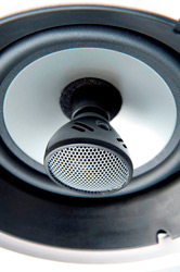 Helos 10 tweeter and woofer detail.